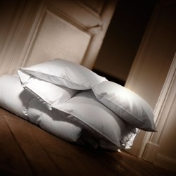 Goose down winter duvet Moldavie 90%