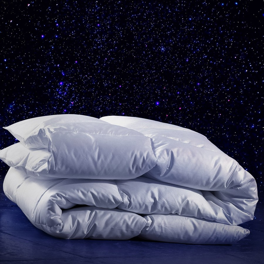 Arctic: white new goose down duvet